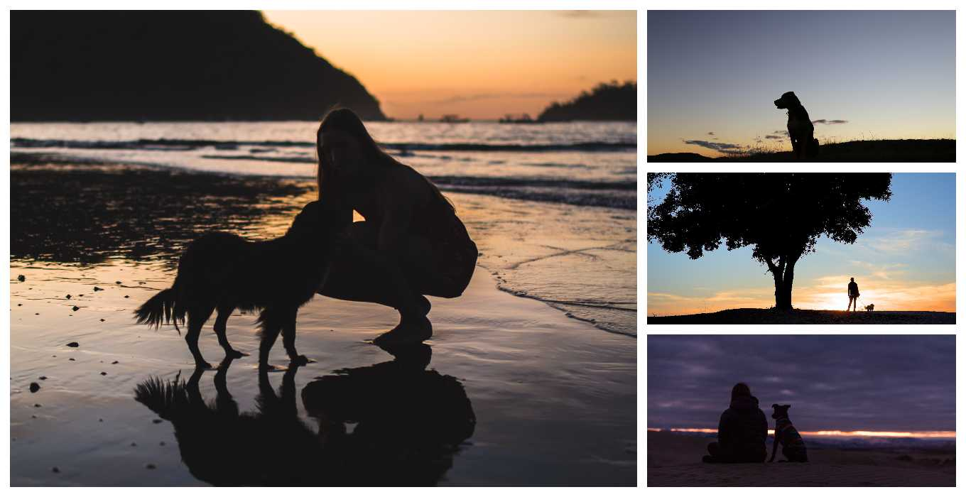 Girl with Dog Collage
